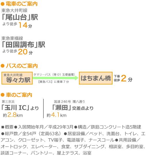 〒158-0087 東京都世田谷区玉堤1-17-18